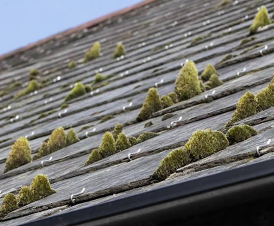 Tarif demoussage toiture au m2 stunning prix toiture - Nettoyage de facade prix au m2 ...
